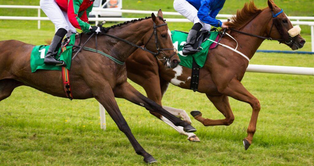 Лошадь пытается не отстать от другой лошади.