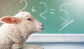 Çocuğunuzun İngilizce Eğitmenine Söylemeniz Gereken 5 Şey