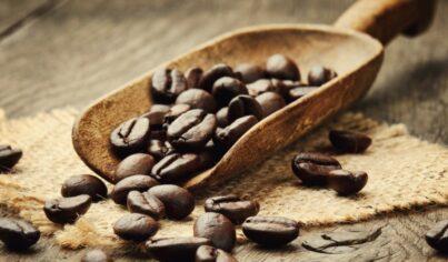 커피에 암 경고 라벨을 붙여야 한다?