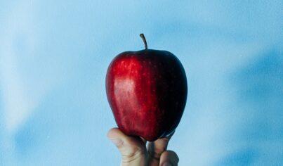 영어보드게임,  Apples to Apples 영어단어 조합하기