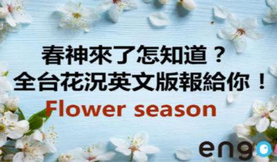 【時事英文】春神來了怎知道?全台花況英文版報給你!