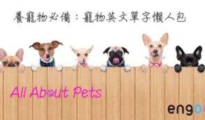 【主題單字】養寵物必備:寵物英文單字懶人包 All About Pets