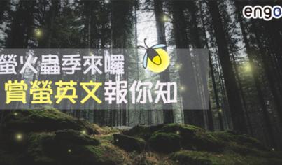 【旅遊英文】螢火蟲季來囉!賞螢英文報你知!