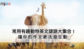 【英文片語】常用有趣動物英文諺語大集合!讓你的作文更活潑生動 Part1