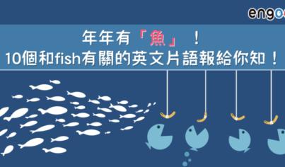 """【英文片語】年年有""""魚"""" !10個和fish有關的英文片語報給你知!"""