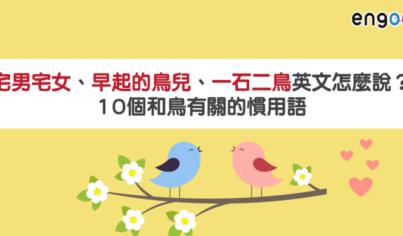 【主題單字】宅男宅女、早起的鳥兒、一石二鳥英文怎麼說?10個和鳥有關的慣用語